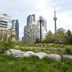 Buildings photography city - épületfotók városfotó